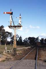 116602: Mangalore Up Home Signal Tocumwal Line