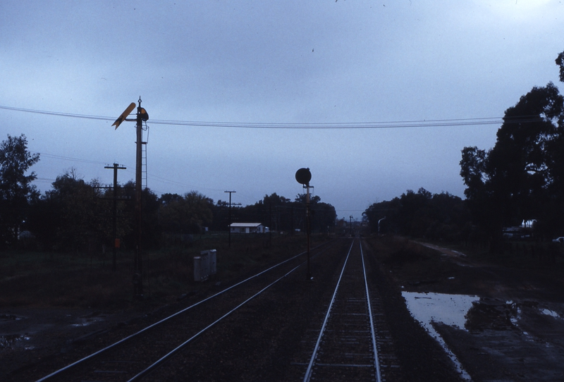 117244: Barnawartha Looking towards Albury from Cab of Loco on 8661 Down Intercapital Daylight Express