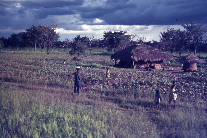 401463: Mile 130-2 East African Railways Pakwach Line Uganda Farms and huts